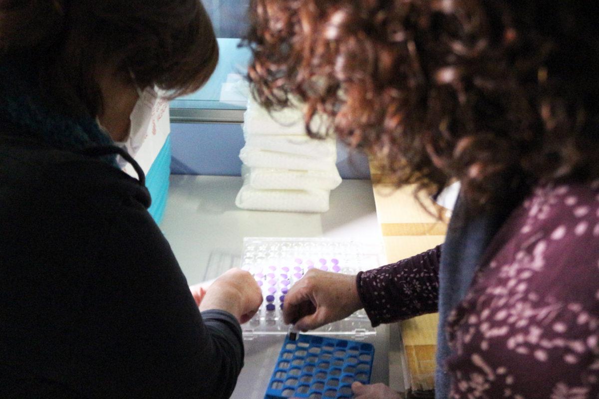 Sanitat dissenya rutes per a vacunar en domicilis i zones rurals