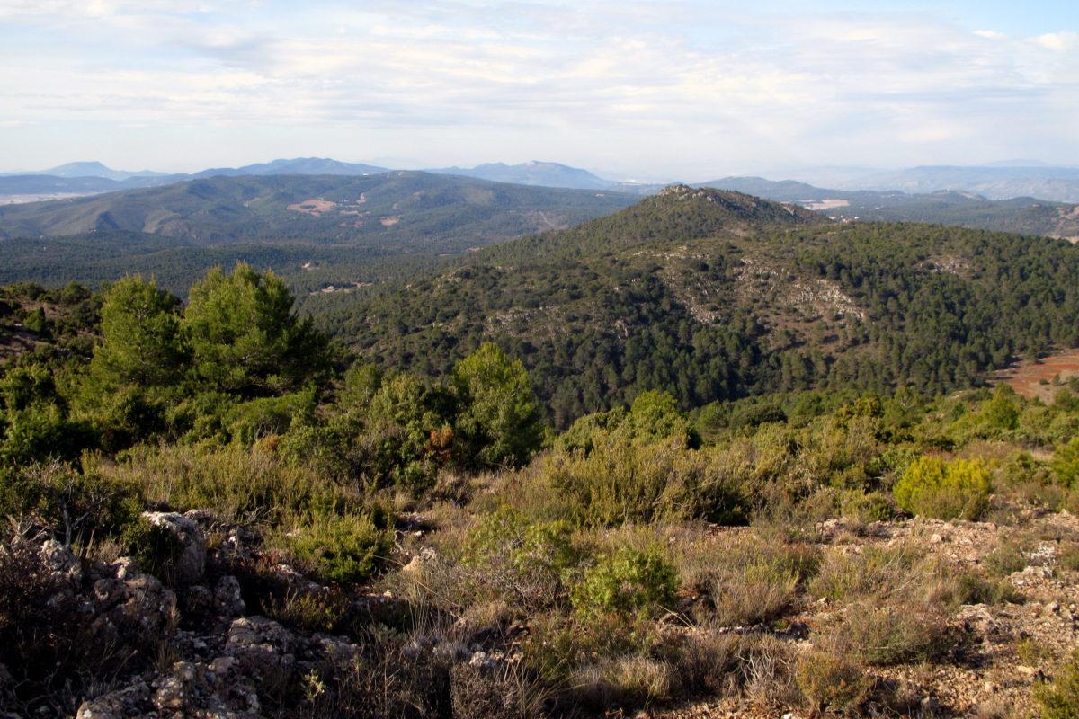 La Serra de Mariola disposarà d'un nou centre d'interpretació