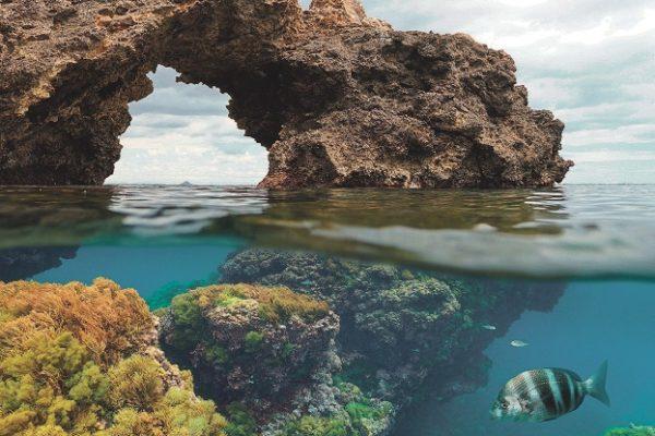 Mediterranejar