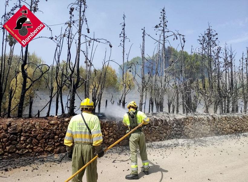 Els bombers donen per controlat un incendi de massa forestal a Muro