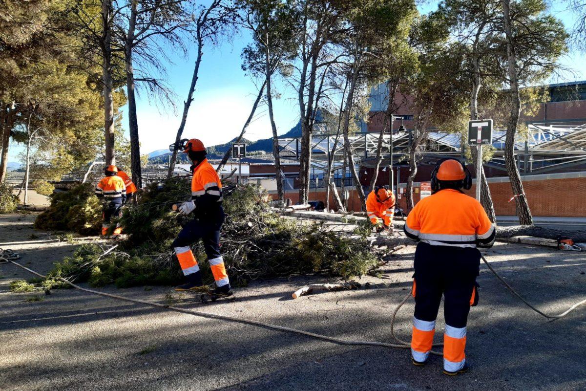 Alcoi obté 1'5 milions d'euros per a contractar 86 persones